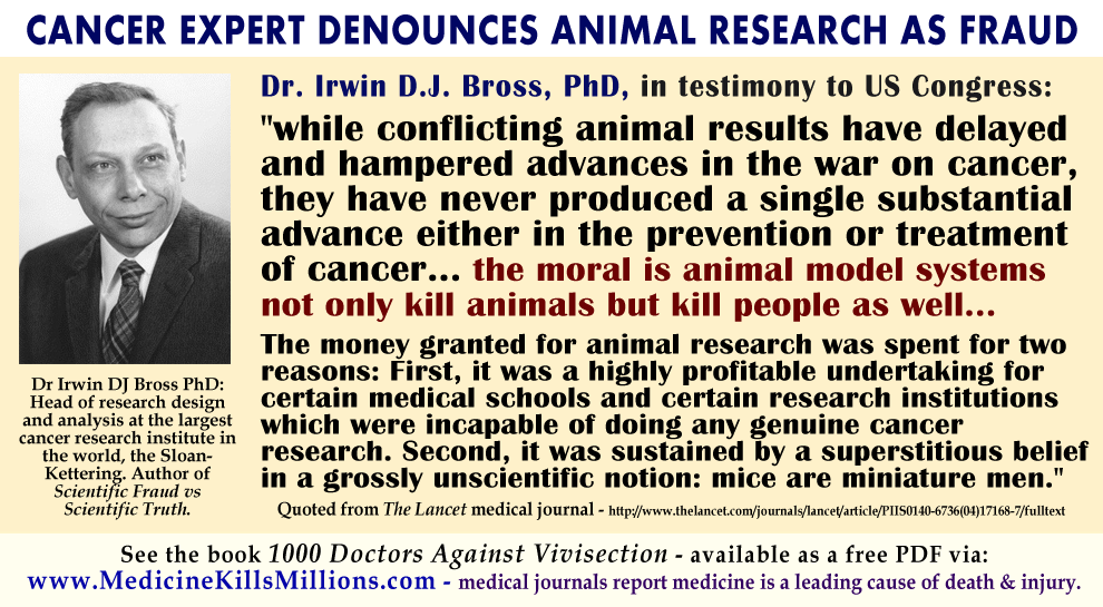 Doctors Explain Why Animal Research Tests Are Not Science Doctors